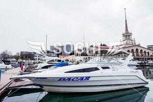 Яхта Bayliner Ciera 2855 Dacar в Сочи