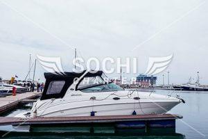 Яхта Sea Ray 315 в Сочи