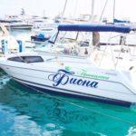 Прокат яхты Bayliner Ciera 265