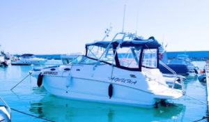 Яхта Chaparral 240 Signature в Адлере
