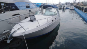 Яхта Sea Ray 315 Sundancer в Адлере