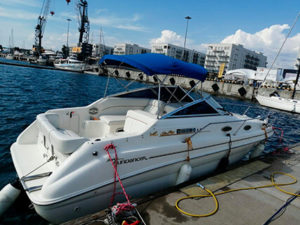 Яхта Sea Ray 240 Sundancer в Адлере