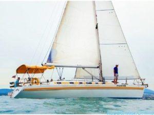 Яхта Don 40 в Сочи