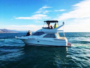 Яхта Bayliner 3258 в Сочи